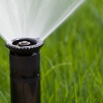 Detail of a working lawn sprinkler head watering the grass